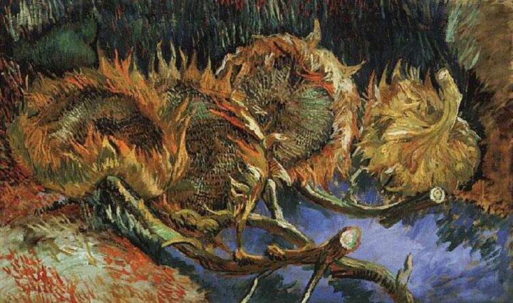 girasole appassito Vincent Van Gogh